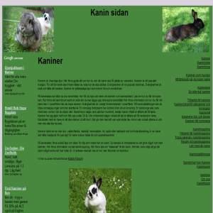 Kaniner som husdhur
