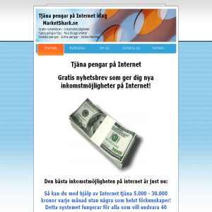 Tjäna pengar på internet