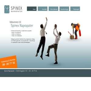Spinex Naprapater
